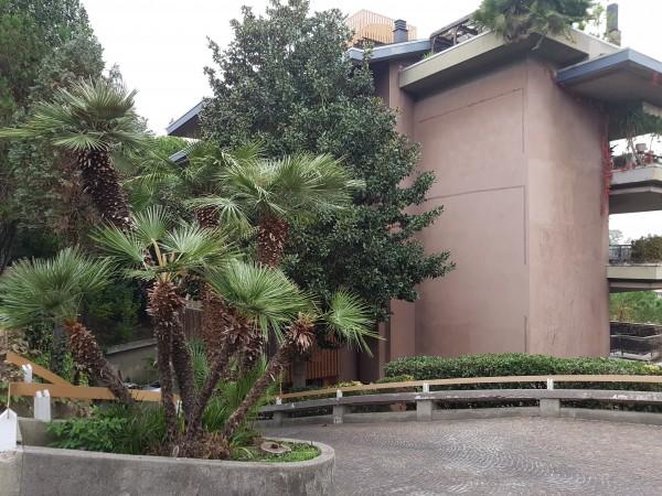 Appartamento in vendita a Roma, Roma-gregorio Vii Baldo Degli Ubaldi, Roma, 28 mq