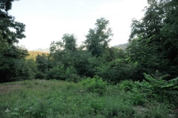 Rustico/Casale in vendita a Campomorone, Langasco, 460 mq - Foto 4