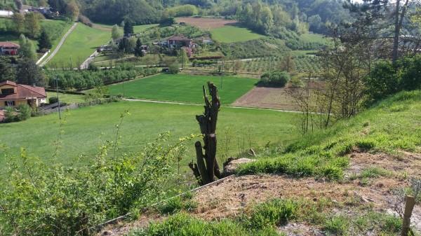Locale Commerciale  in vendita a Asti, Casabianca, Con giardino, 300 mq - Foto 23