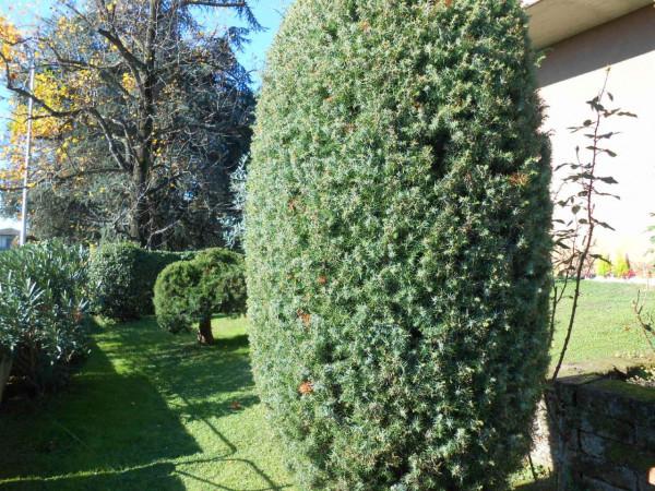 Villa in vendita a Pandino, Residenziale, Con giardino, 350 mq - Foto 4