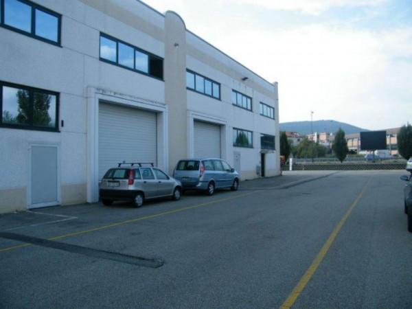 Capannone in affitto a Avigliana, 880 mq - Foto 5