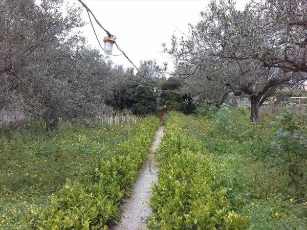 Casa indipendente in vendita a Trapani, Palma, Con giardino, 180 mq - Foto 3