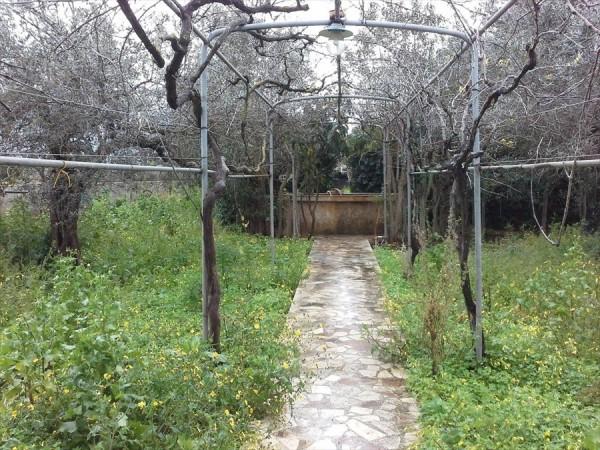 Casa indipendente in vendita a Trapani, Palma, Con giardino, 180 mq - Foto 10