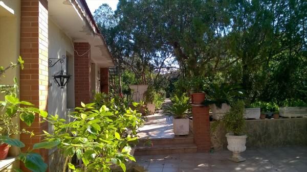Casa indipendente in vendita a Trapani, Palma, Con giardino, 180 mq - Foto 6