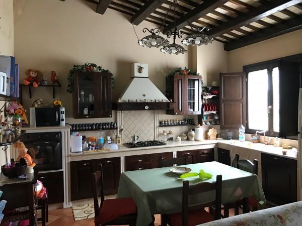 Casa indipendente in vendita a Trapani, Fontanasalsa, Con giardino, 270 mq - Foto 3