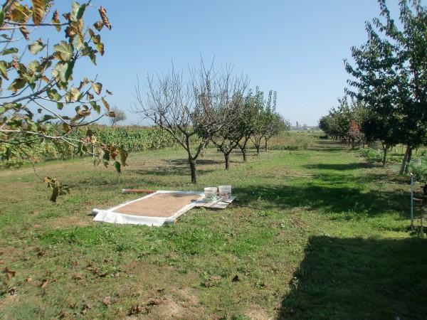 Casa indipendente in vendita a Rimini, Rimini Aeroporto, Con giardino, 460 mq - Foto 13