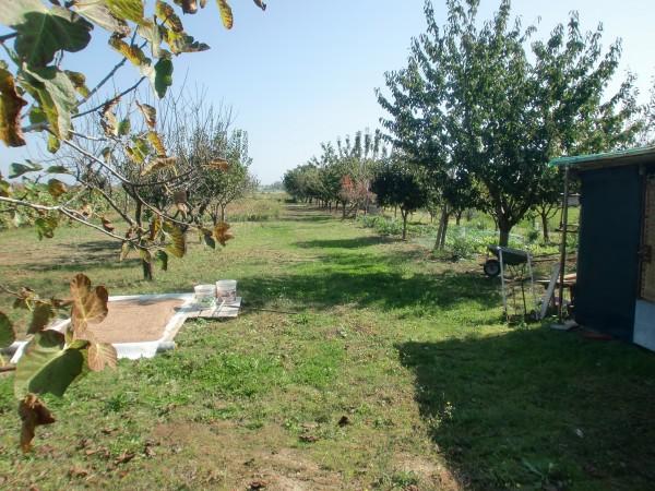 Casa indipendente in vendita a Rimini, Rimini Aeroporto, Con giardino, 460 mq - Foto 1