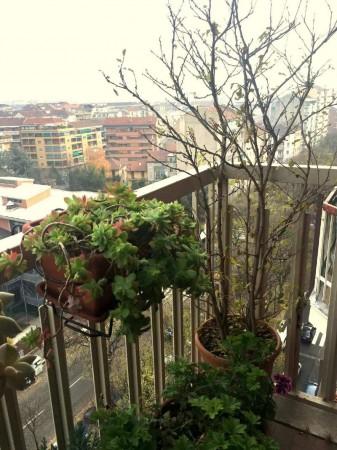 Appartamento in affitto a Torino, Santa Rita, 90 mq