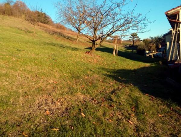 Casa indipendente in vendita a Bertinoro, Fratta Terme, Con giardino, 117 mq - Foto 5