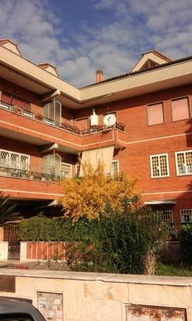 Appartamento in affitto a Roma, Giustiniana, 95 mq