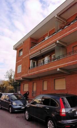 Appartamento in affitto a Roma, Giustiniana, 95 mq - Foto 4