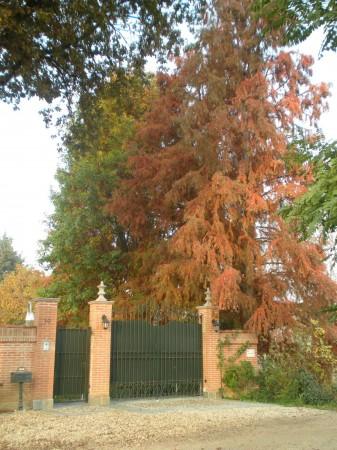 Villa in vendita a Piobesi Torinese, Piobesi, Con giardino, 577 mq - Foto 36