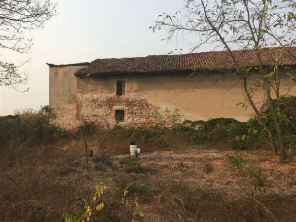Rustico/Casale in vendita a Caselle Torinese, Malanghero, 4000 mq - Foto 6