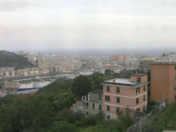 Appartamento in vendita a Genova, Coronata, Con giardino, 80 mq - Foto 10