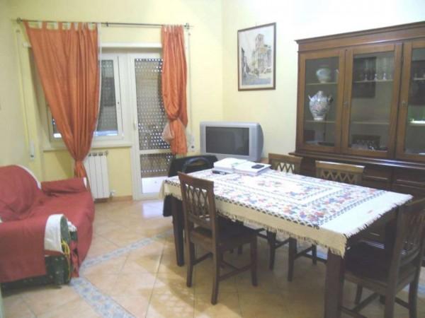 Appartamento in affitto a Nettuno, Arredato, 80 mq