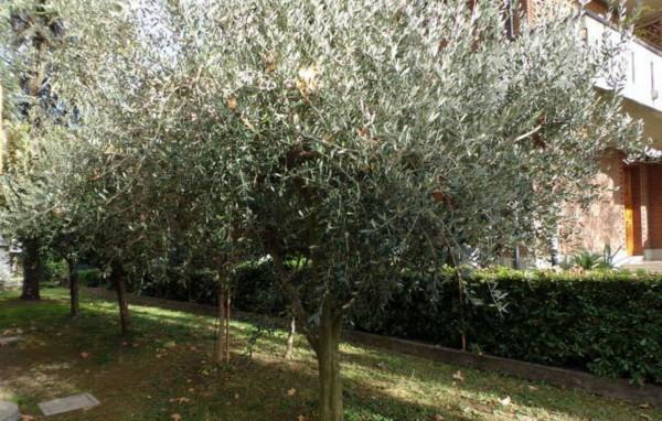 Appartamento in vendita a Forlì, Viale Spazzoli, Con giardino, 89 mq - Foto 6