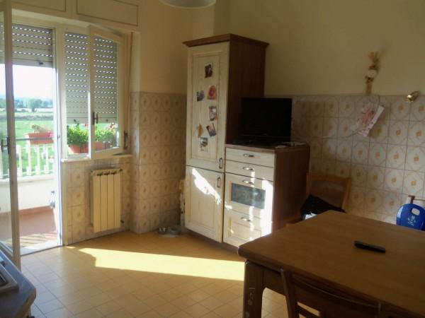 Appartamento in affitto a Monterotondo, Con giardino, 130 mq - Foto 11