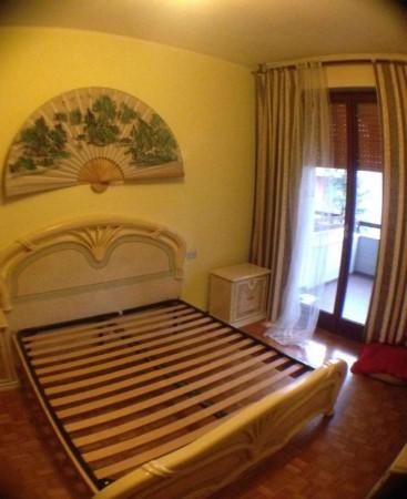 Appartamento in affitto a Gallarate, Ospedale - Malpensa Uno, Arredato, con giardino, 90 mq - Foto 7