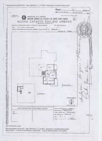 Appartamento in affitto a Gallarate, Ospedale - Malpensa Uno, Arredato, con giardino, 90 mq - Foto 3