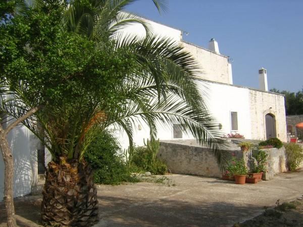 Rustico/Casale in vendita a Conversano, Contrada Foggiali, Con giardino, 400 mq - Foto 18