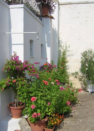 Rustico/Casale in vendita a Conversano, Contrada Foggiali, Con giardino, 400 mq - Foto 11