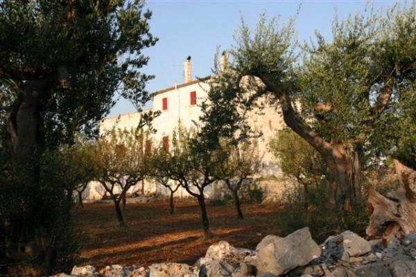Rustico/Casale in vendita a Conversano, Contrada Foggiali, Con giardino, 400 mq - Foto 9