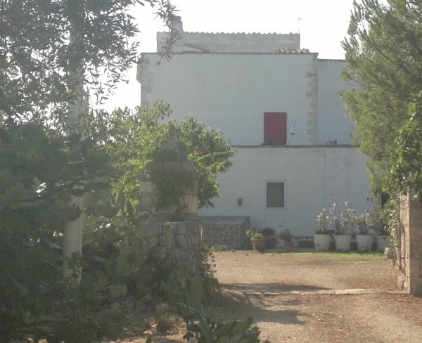 Rustico/Casale in vendita a Conversano, Contrada Foggiali, Con giardino, 400 mq - Foto 17