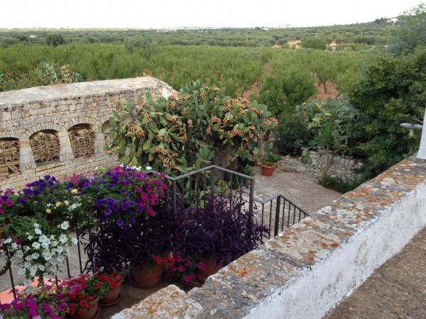 Rustico/Casale in vendita a Conversano, Contrada Foggiali, Con giardino, 400 mq - Foto 3