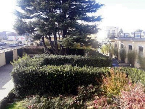 Locale Commerciale  in affitto a Legnano, Oltrestazione, Con giardino, 420 mq - Foto 2