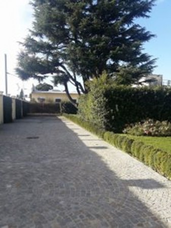 Locale Commerciale  in affitto a Legnano, Oltrestazione, Con giardino, 420 mq - Foto 3