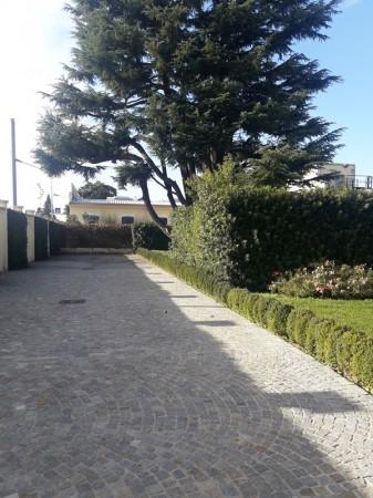 Locale Commerciale  in affitto a Legnano, Oltrestazione, Con giardino, 420 mq - Foto 16