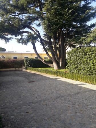 Locale Commerciale  in affitto a Legnano, Oltrestazione, Con giardino, 420 mq - Foto 15