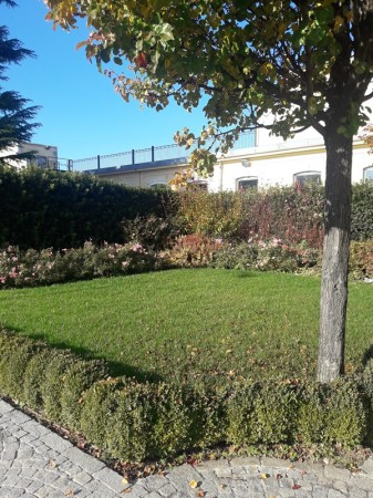 Locale Commerciale  in affitto a Legnano, Oltrestazione, Con giardino, 420 mq - Foto 18