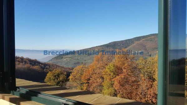 Villa in vendita a Spello, Frazione, Con giardino, 380 mq - Foto 6