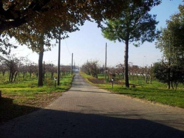 Appartamento in vendita a Forlì, Arredato, con giardino, 120 mq - Foto 6