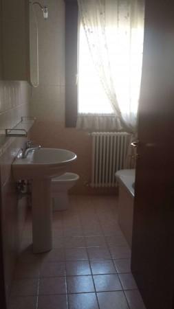 Appartamento in vendita a Albignasego, San Giacomo, Arredato, con giardino, 70 mq - Foto 8