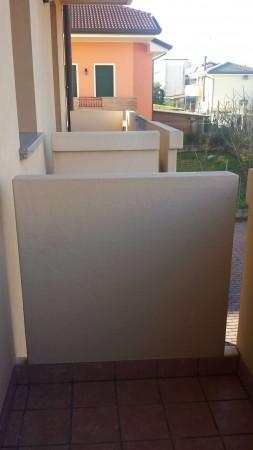Appartamento in vendita a Albignasego, San Giacomo, Arredato, con giardino, 70 mq - Foto 5
