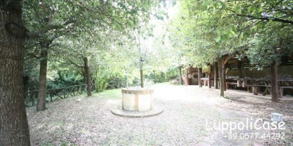 Villa in vendita a Sovicille, Con giardino, 270 mq - Foto 14