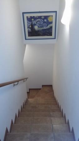 Appartamento in vendita a Noventa Padovana, Noventa Padovana, Con giardino, 100 mq - Foto 16