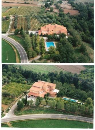 Immobile in vendita a Pitigliano, Con giardino, 1500 mq - Foto 15