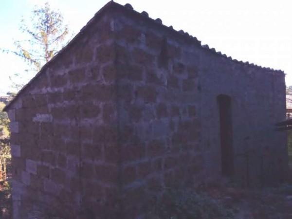 Appartamento in vendita a Bomarzo, Con giardino, 138 mq - Foto 10
