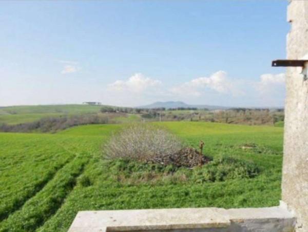 Rustico/Casale in vendita a Tuscania, 180 mq - Foto 13