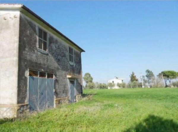 Rustico/Casale in vendita a Tuscania, 180 mq - Foto 11