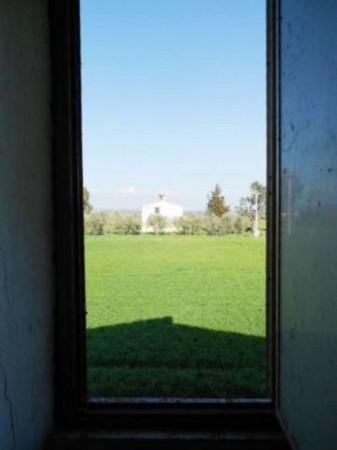 Rustico/Casale in vendita a Tuscania, 180 mq - Foto 15