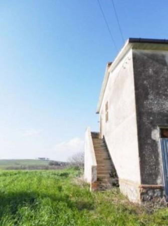 Rustico/Casale in vendita a Tuscania, 180 mq - Foto 9