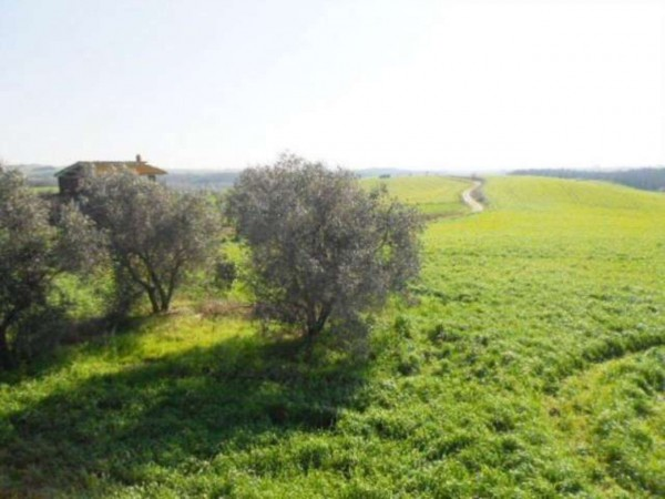 Rustico/Casale in vendita a Tuscania, 180 mq - Foto 6