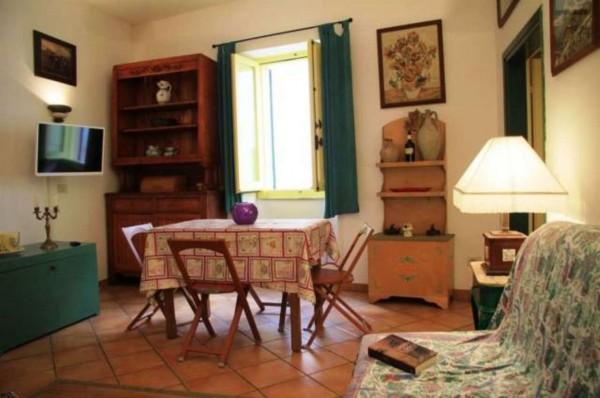 Appartamento in affitto a Tuscania, Arredato, 55 mq