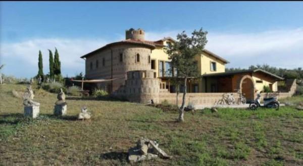Villa in vendita a Tuscania, Arredato, con giardino, 400 mq - Foto 5