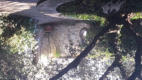 Villa in vendita a Tuscania, Con giardino, 250 mq - Foto 6