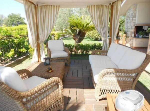 Villa in vendita a Tuscania, Con giardino, 400 mq